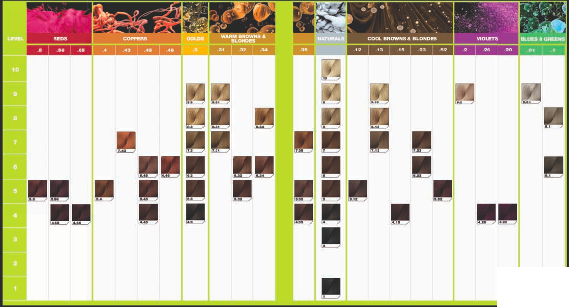 Summary International Colour Charts For Hairdressing Hair And